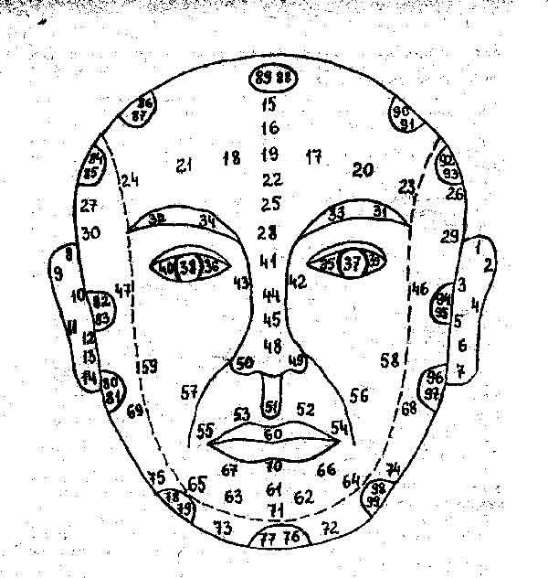 Зоны на лице человека