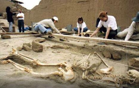 Археологи нашли на Крите покрытый золотом скелет. Фото: AP
